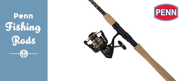 review of penn fishing rods | best fishing tools and equipment, Fishing Rod