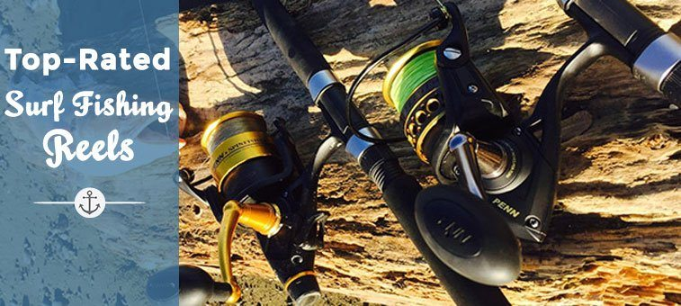 Top 5 Surf Fishing Reels in the Market