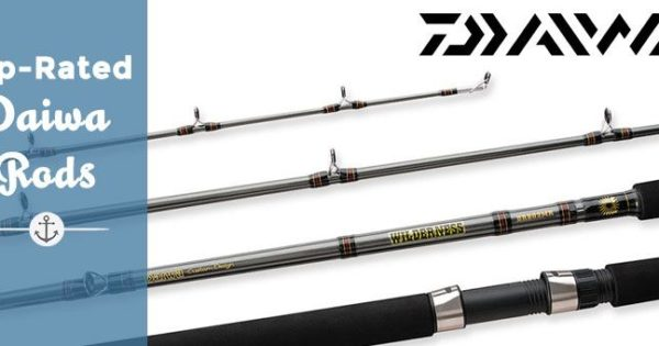 Top Rated Daiwa Rods for Sale | Best Fishing Gear and Equipment