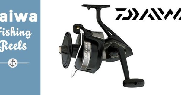Daiwa Reels Review and Comparison | Best Fishing Gear, Reviewed Here