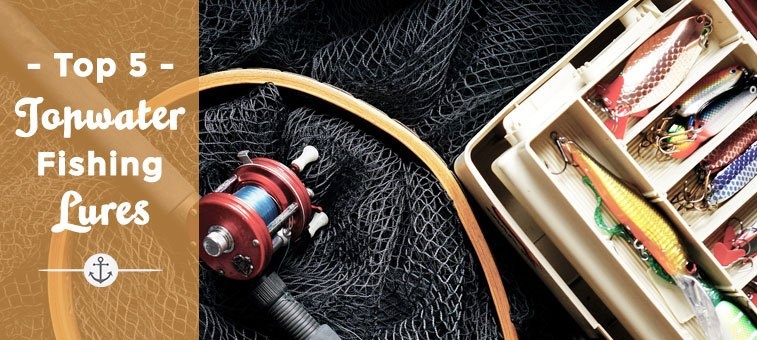 The 5 Best Topwater Lures