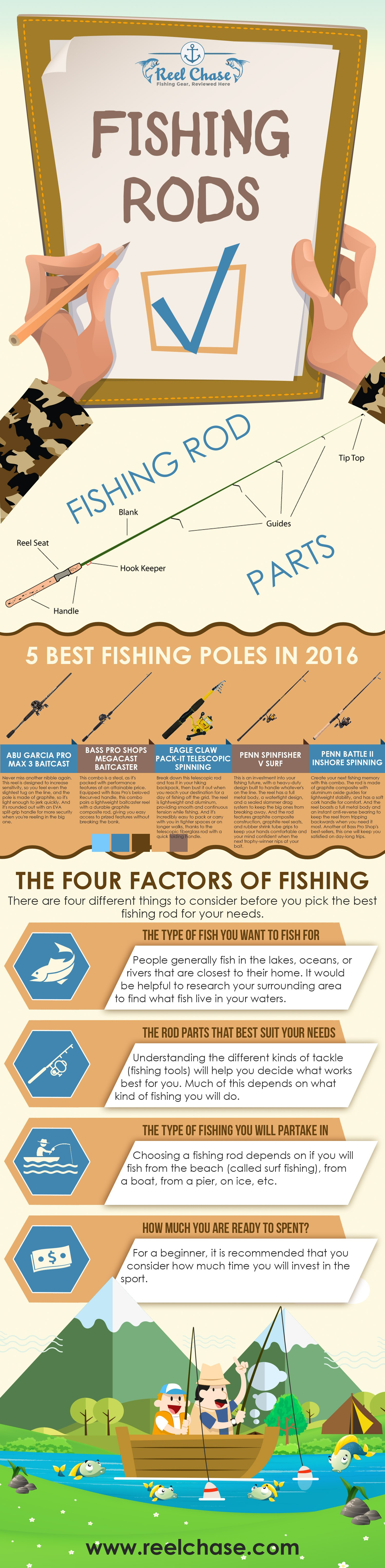 Fishing Rods Infographic