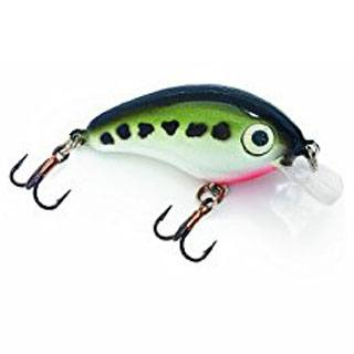 storm-smash-shad-5-fishing-lure