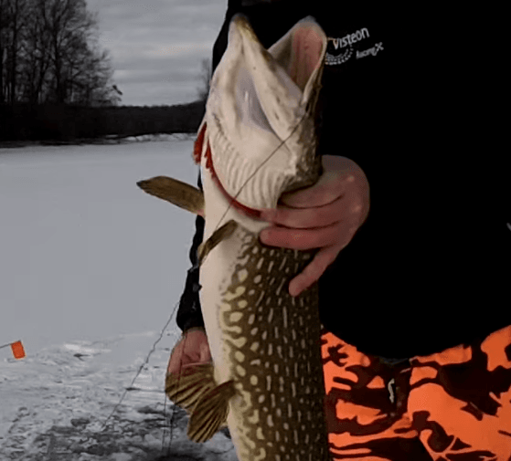 Angling_with_Tip_Up_on_the_Ice