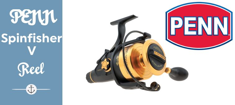 PENN Spinfisher V Spinning Reel Featured