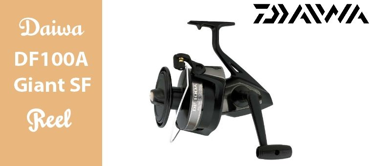 Daiwa DF100A Giant Spinning Fishing Reel Review