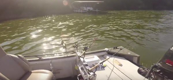 Learn the Best Practice of How to Troll Crankbaits for Crappie