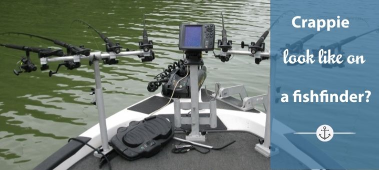 What-Do-Crappie-Look-Like-on-a-Fishfinder