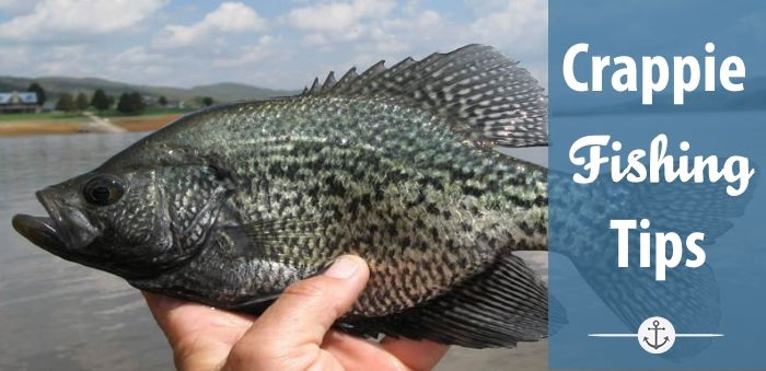 Crappie Fishing Tips & Tricks