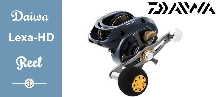 Daiwa Lexa-HD Reel Review