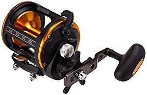 Daiwa SGT50H Seagate Star Drag Saltwater Conventional Reel5