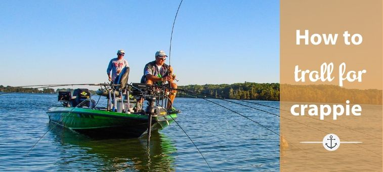 How to Troll for Crappie Gears, Baits, and Speed