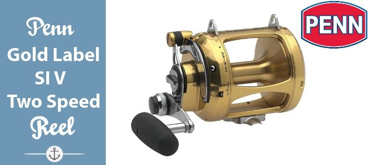 Penn Gold Label Series International V Two Speed Reel