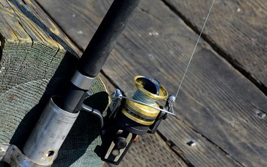 Find Out What Trout Rods You Need to Use