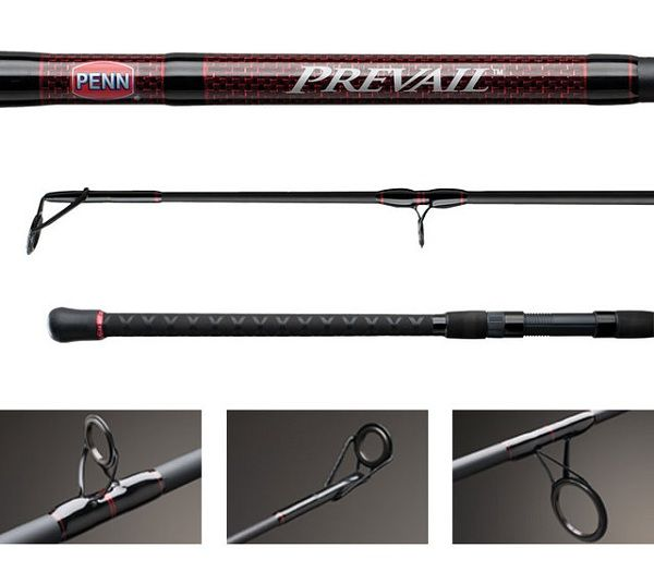 Penn Prevail Surf Casting Rod 3