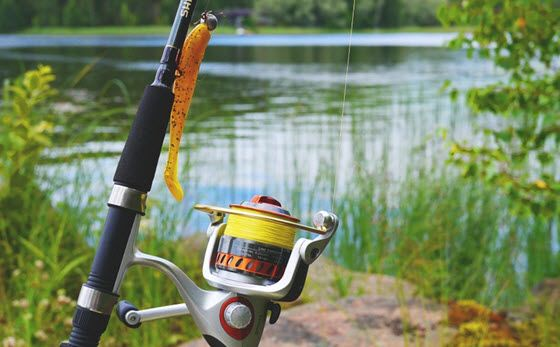 The Best Trout Fishing Lines