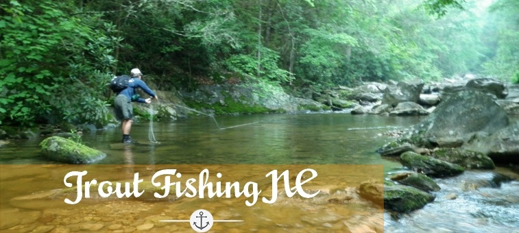 Trout fishing tips and tricks to catch any trout at anytime for North carolina trout fishing season