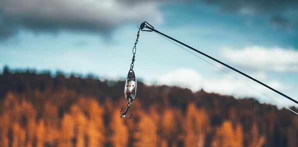 Trout Fishing Rigs And Tips for Beginners