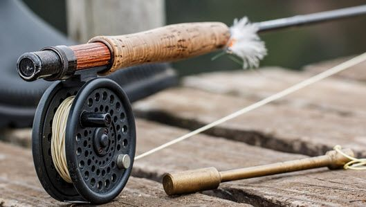 What Are the Best Trout Rods to Use