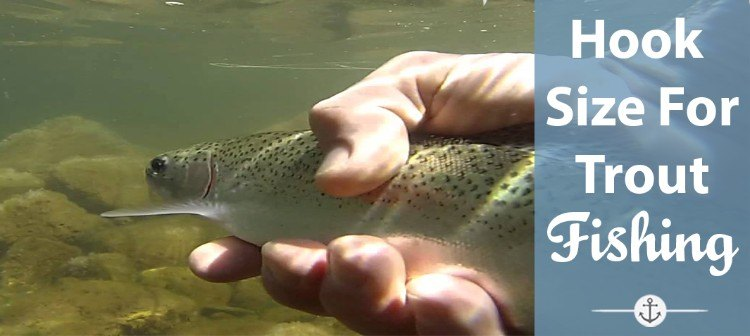 How to Choose What Size Hook for Trout Fishing