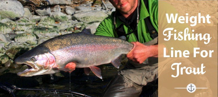 What Weight Fishing Line for Trout You Should Use