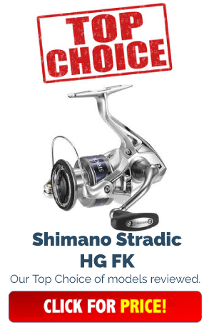 Spinning Reels Top Choice
